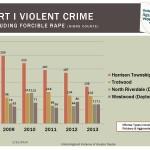 UAV-gun-crime-2013-EOY-update_Page_1