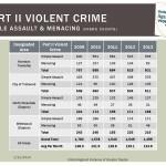 UAV-gun-crime-2013-EOY-update_Page_6